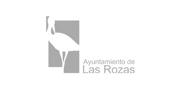 Ayuntamiento Las Rozas Madrid