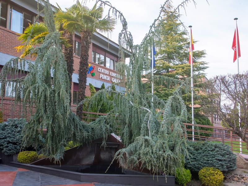 Instalaciones del Punta Galea