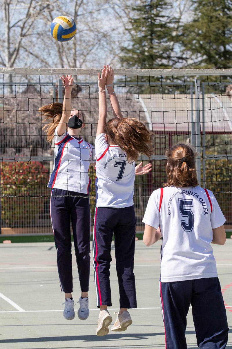 Escuelas Deportivas: Voleibol